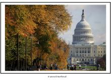 WASHINGTON (USA)