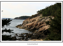 ACADIA NATIONAL PARK (USA)