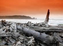 Ruby Beach (Olympic National Park)