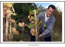 Michael SCHUMACHER vendangerant la vigne à Farinet appartenant à l'abbé Pierre