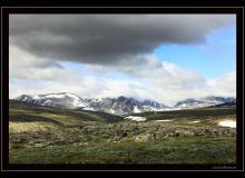 Parc National Dovrefjell